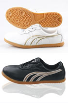 Professional Taichi Competition Sneakers (Leather)