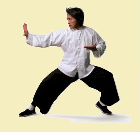 Mandarin Collar Folding-cuff Kung Fu Suit (CM) [KFTZ-1014] ♧